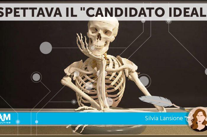"""IL CANDIDATO """"PERFETTO""""...NON ESISTE"""